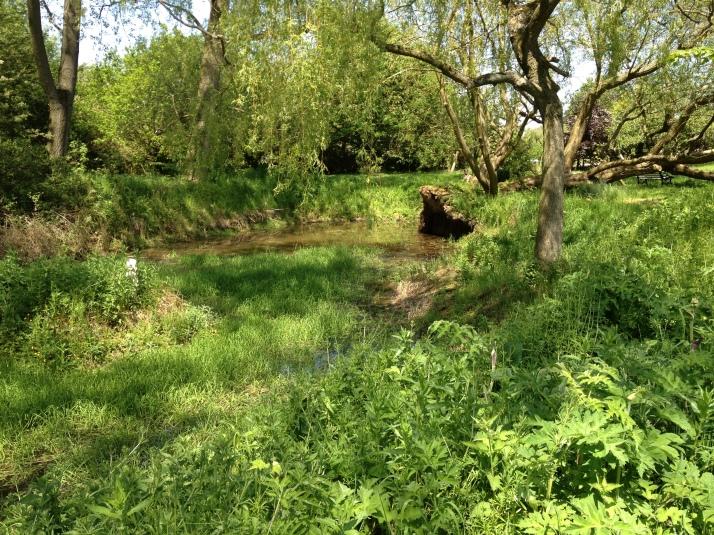 Pond - finally deeper